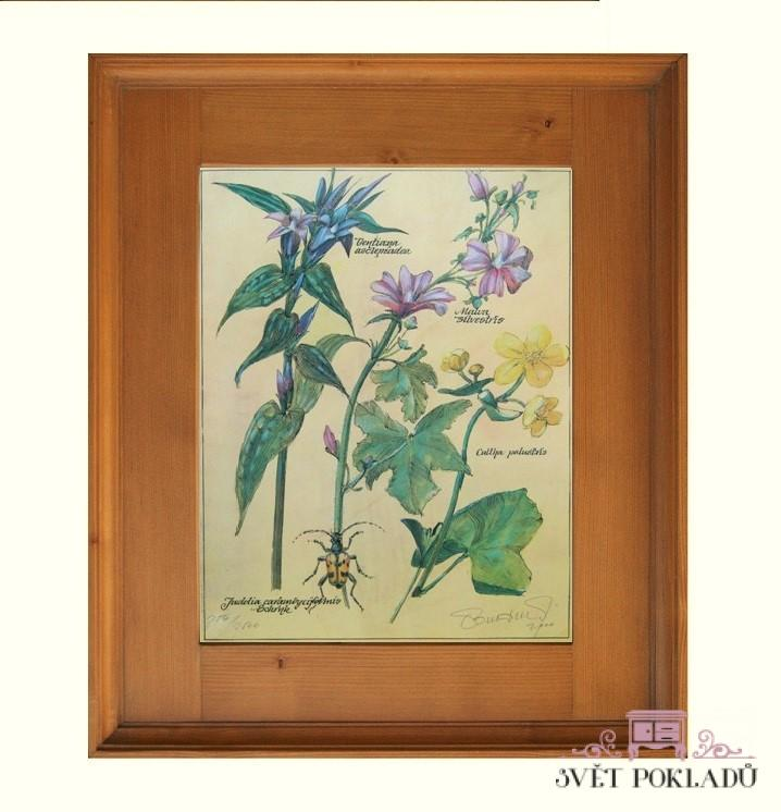 obrázek květy v rámu Svět pokladů